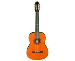 New Ashton Classical and Flamenco guitars now available