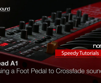 Nord Speedy Tutorial : Using a Foot Pedal to Crossfade Sounds on the Nord Lead A1