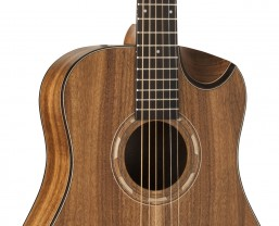 Washburn Guitars Adds New 3/4 Sizes to the Comfort Series