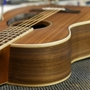 P-03WW American Walnut